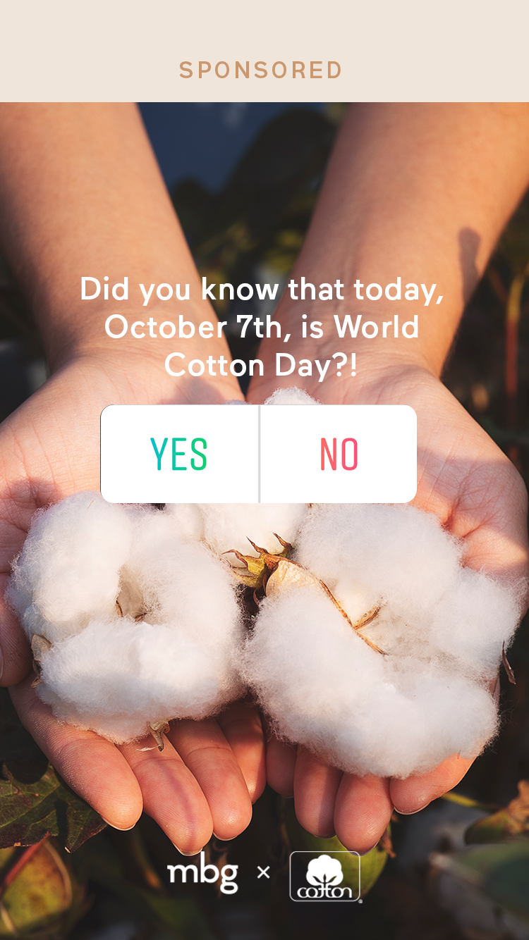 cotton-quiz01-2