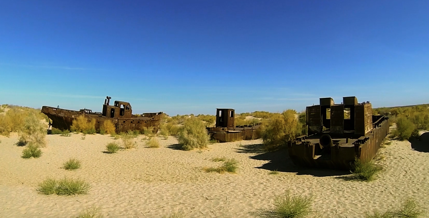 The devastation of the Aral Sea is one of the world's worst environmental disasters, and cotton has been blamed. But this video will show that cotton is not the reason for this terrible event.